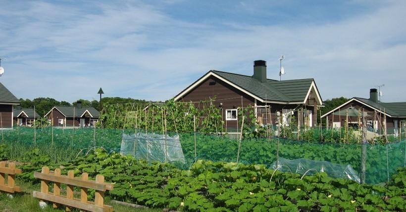 野菜づくりや花づくりを楽しみながら、自然や人とのふれあいを深めることできる施設です。