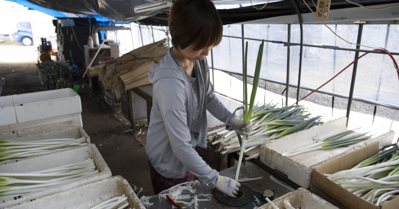 現在は栗山町内の農家でアルバイトとして働く。