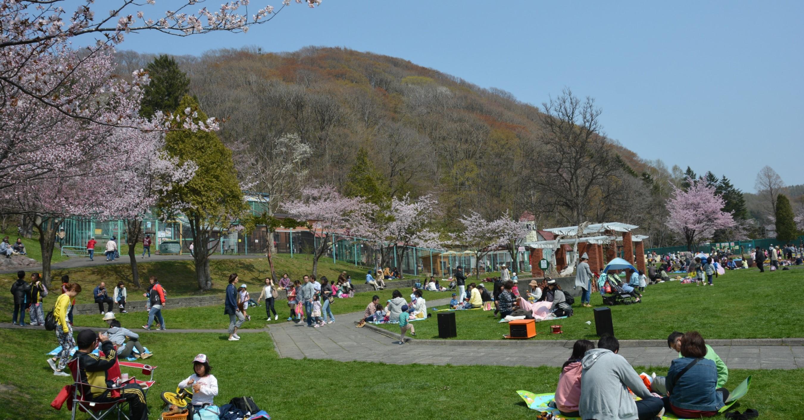 春の栗山公園