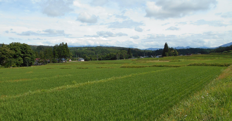 川西町東沢地区の風景