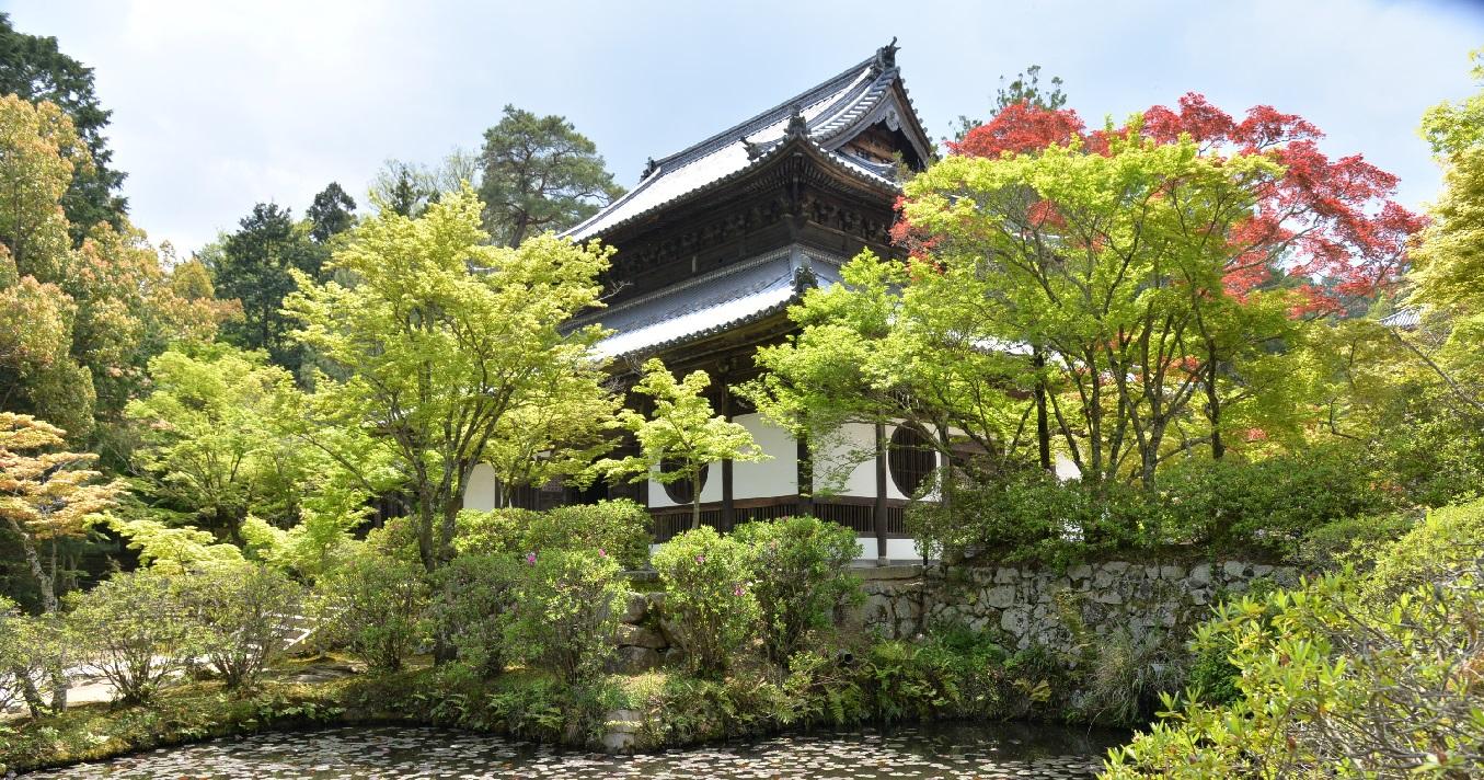 画聖雪舟が修行をした「井山宝福寺」