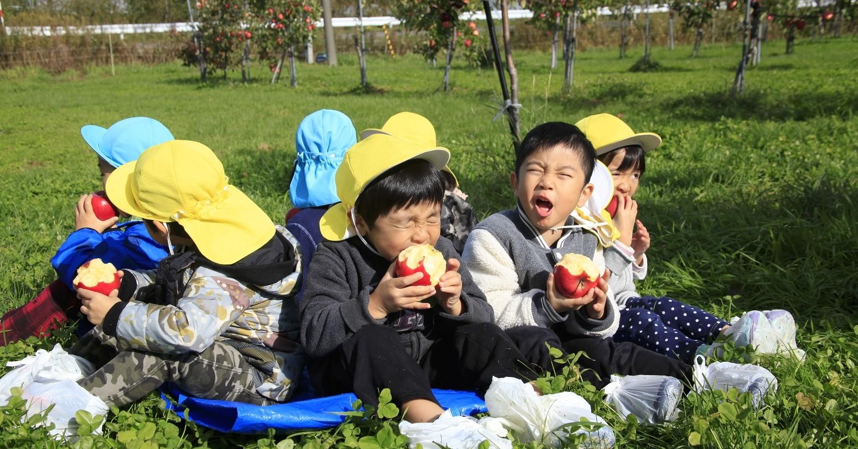 道内有数のりんごの産地