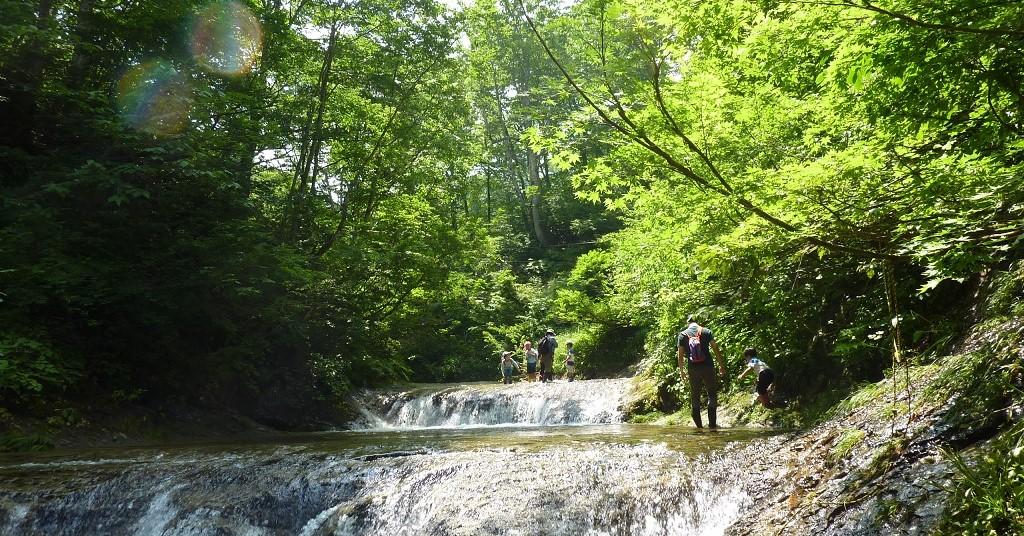 ブナの森の中を沢を歩きながら散策できる人気のスポットです。