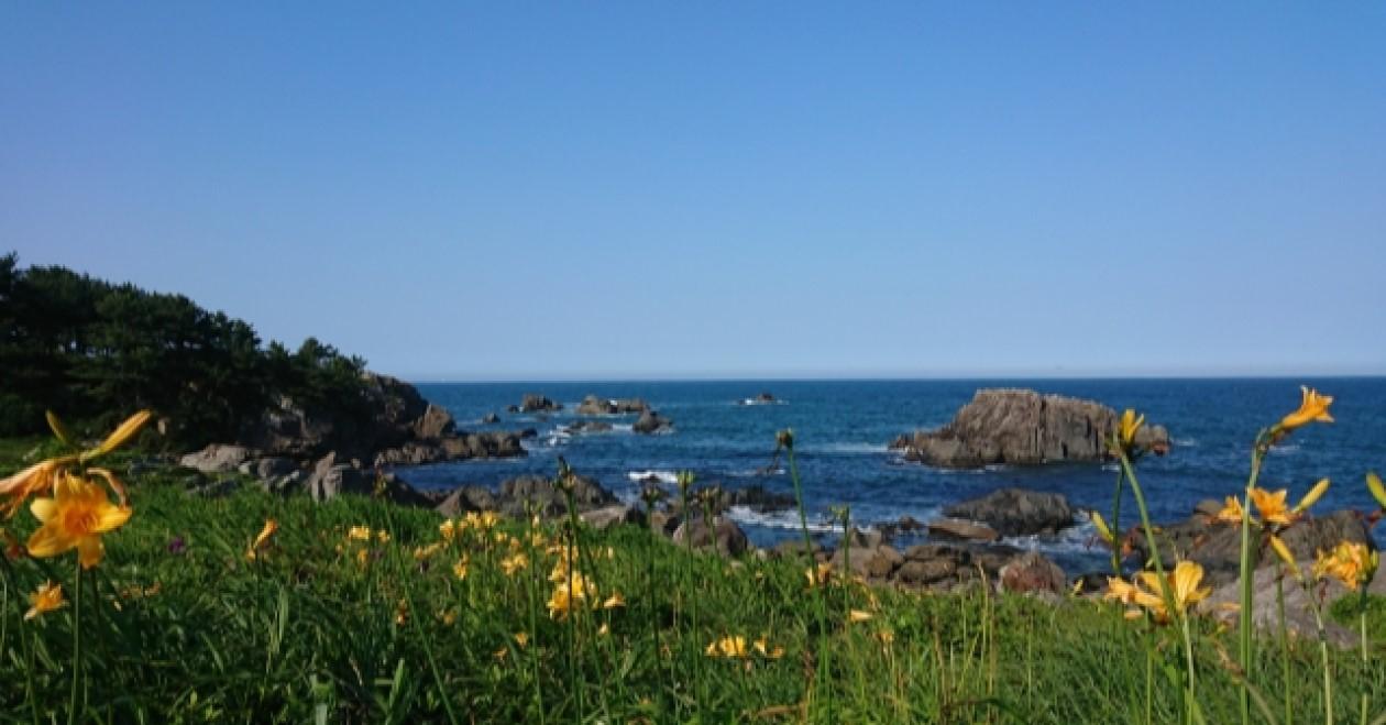 種差海岸:三陸復興国立公園内にあり、国の名勝に指定されています。自然も残っている中核市です!